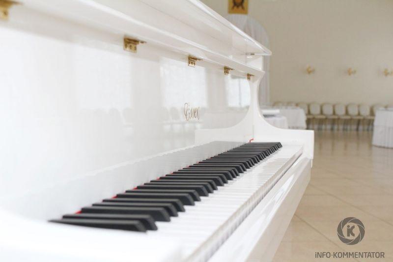Проведение концерта в Софийском павильоне в Пушкине